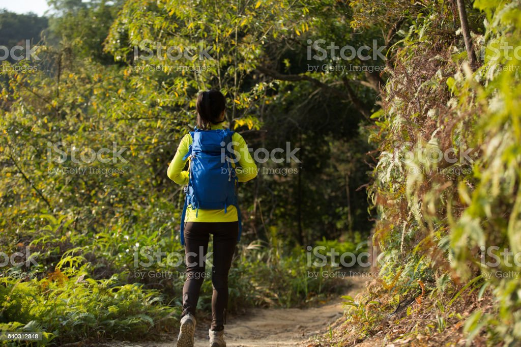 young woman hiker hiking on forest mountain stock photo