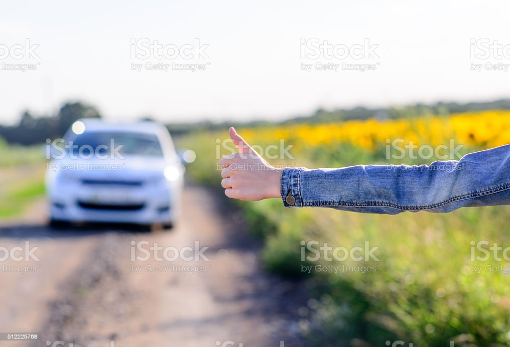 Young woman hitchhiking in the countryside stock photo