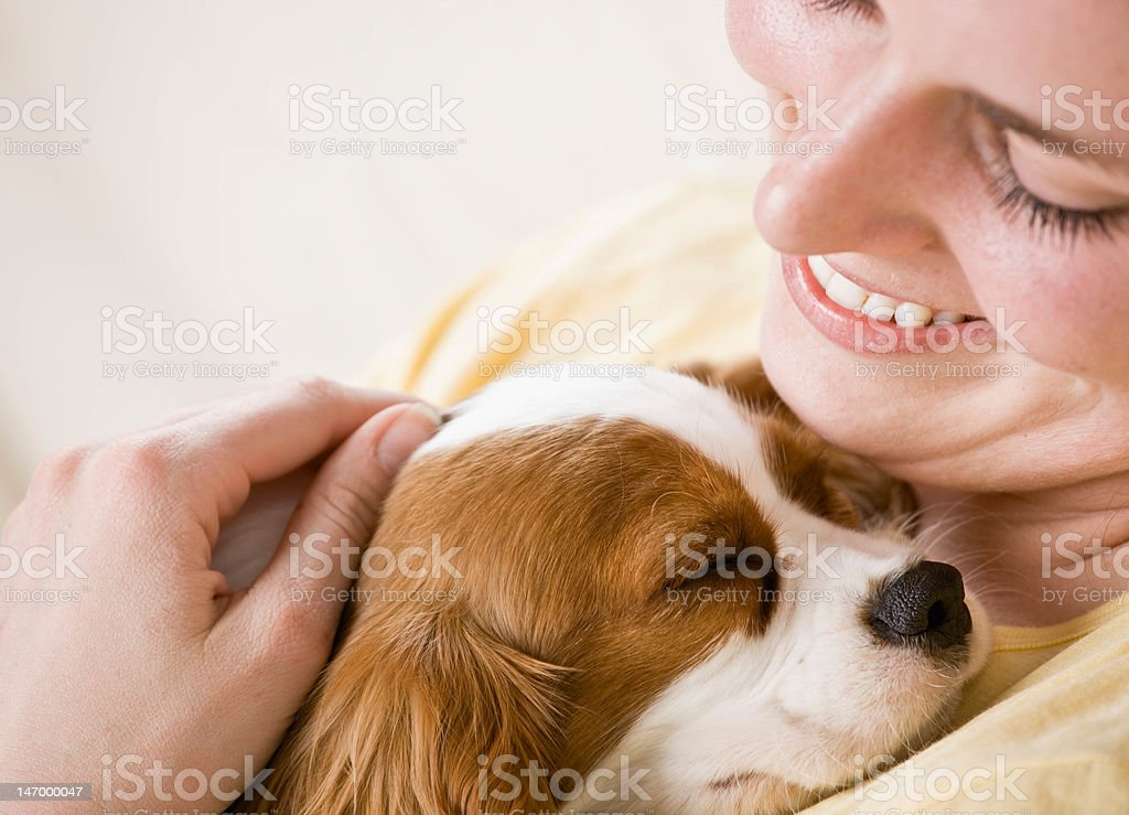 young woman holding puppy on couch stock photo