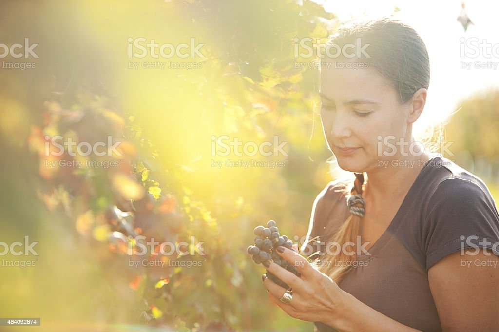 Young Woman Holding Red Grapes stock photo