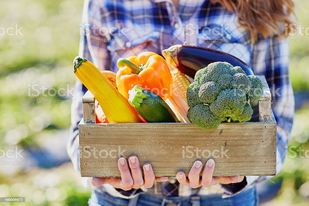 Young woman holding wooden crate with vegetables stock photo