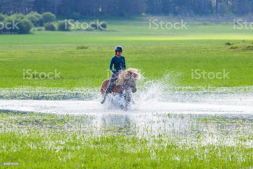 Young woman horseback riding icelandic horse stock photo