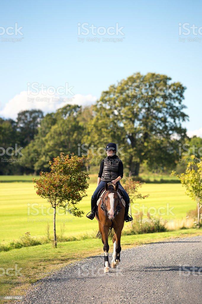 Young woman horseback riding in the sun, Norway stock photo