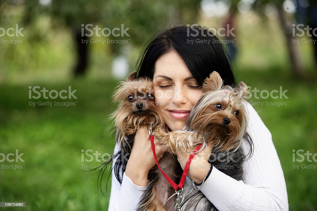 Young woman hugging yorkshire terriers royalty-free stock photo
