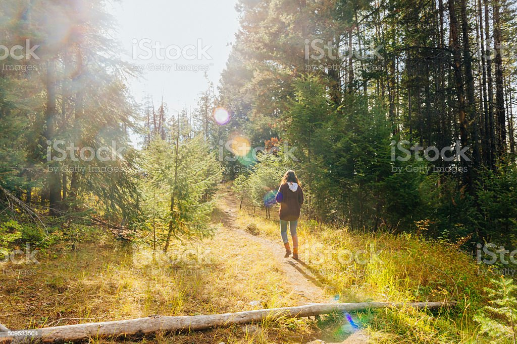 Young Woman in 20s Hiking in Montana Forest stock photo