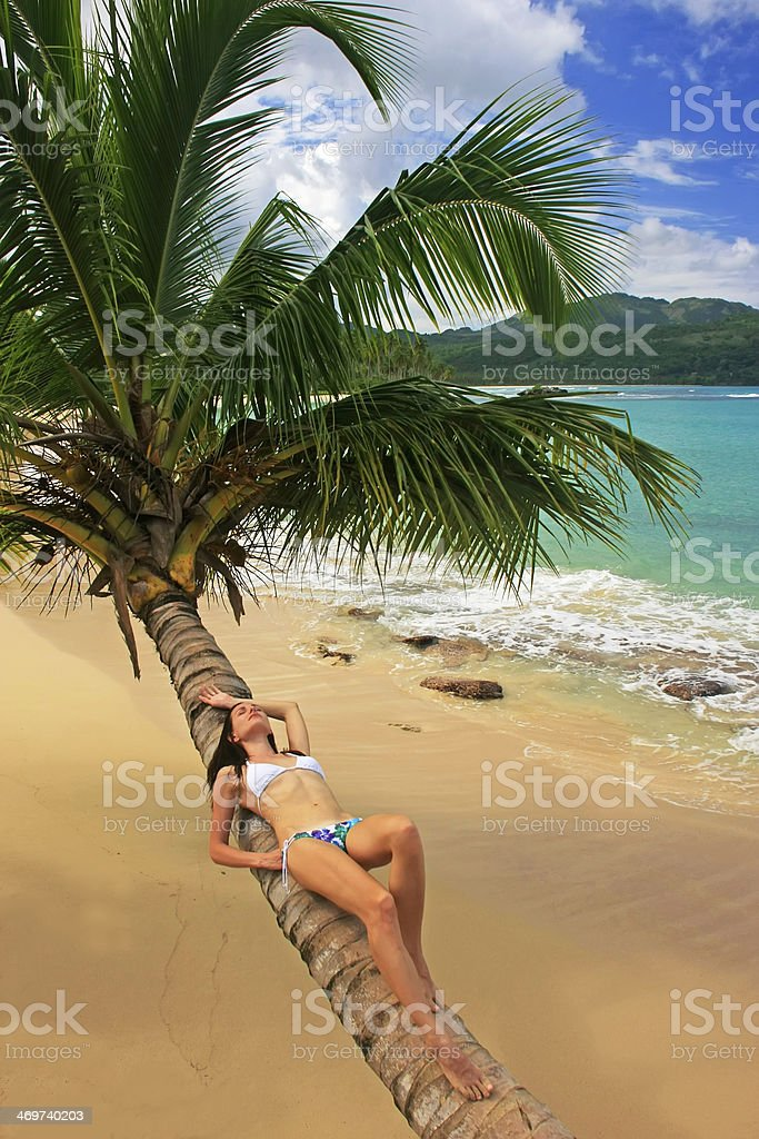 Young woman in bikini laying on leaning palm tree royalty-free stock photo