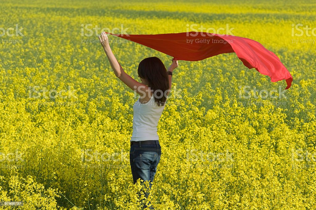 Young woman in canola field holding red scarf to wind stock photo