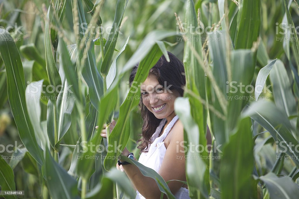 Young woman in corn field stock photo