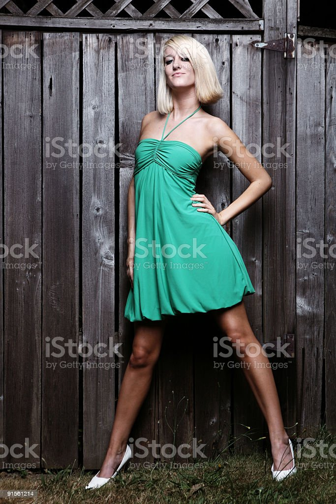 Young Woman in Front of a Brown Fence royalty-free stock photo