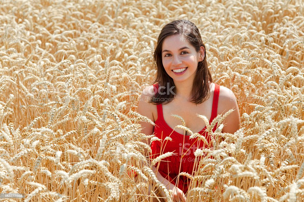 Young woman in the middle field of wheat stock photo