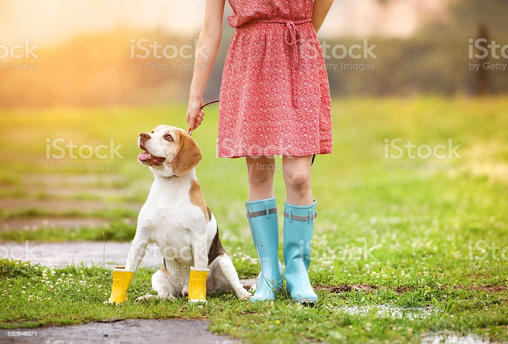Young woman in wellies walk her dog stock photo