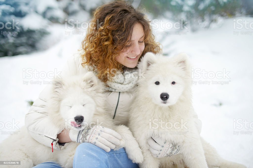 young woman in winter park with white dogs stock photo