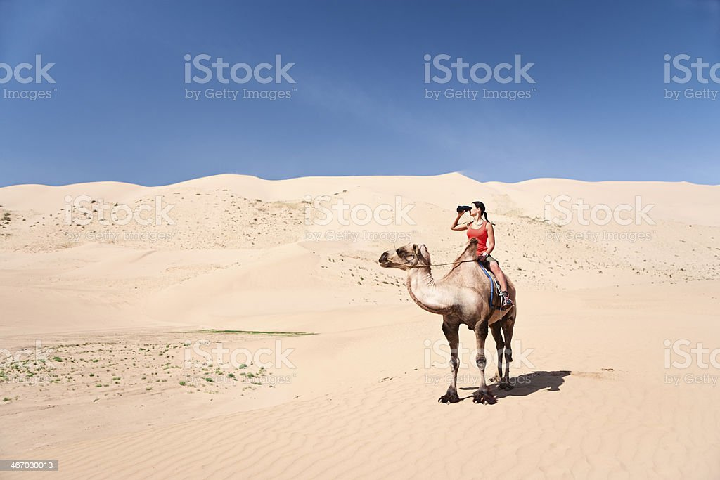 Young woman is looking through a binoculars on the camel royalty-free stock photo