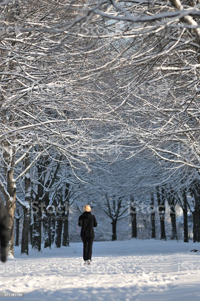 Young woman jogging in winter park stock photo