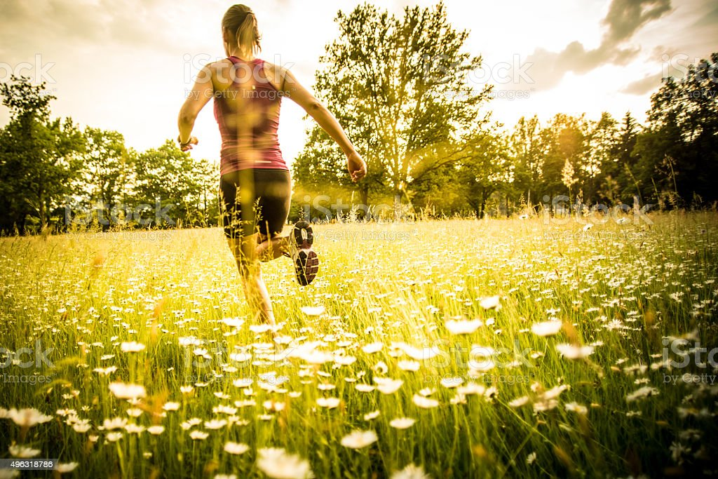 Young woman jogging, rear view stock photo