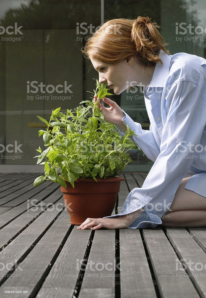 Young woman kneeling on decking, smelling potted plant, side view royalty-free stock photo
