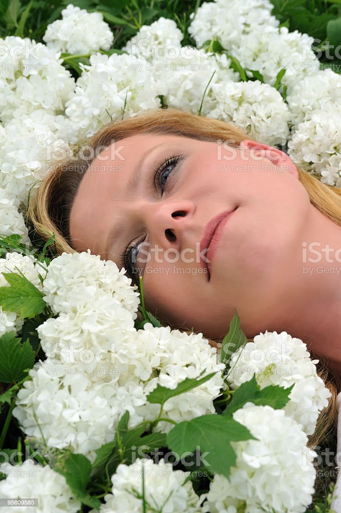 Young woman laying in flowers - snowballs royalty-free stock photo