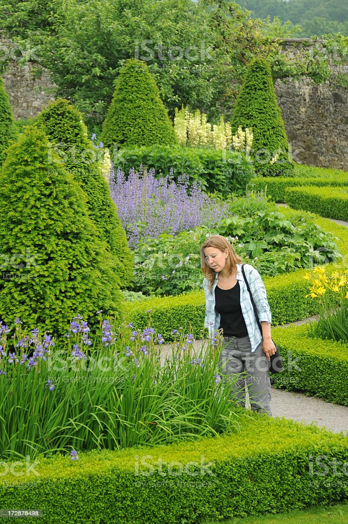 young woman looking at beautiful flower bed stock photo