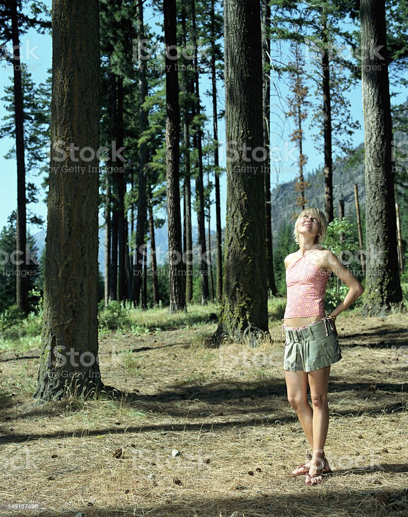 Young woman looking up into trees stock photo