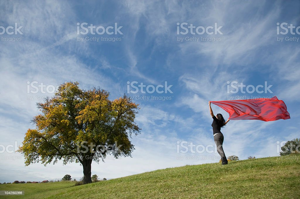Young woman on meadow holding red scarf to wind (XXL) royalty-free stock photo