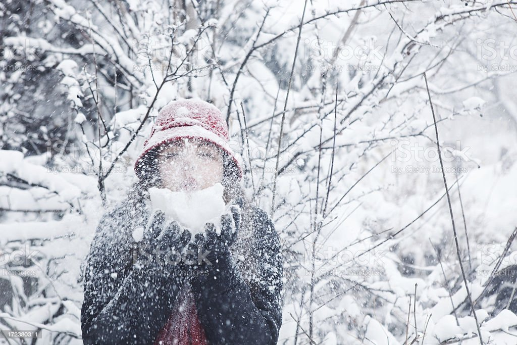 Young Woman Outdoors in the Winter royalty-free stock photo