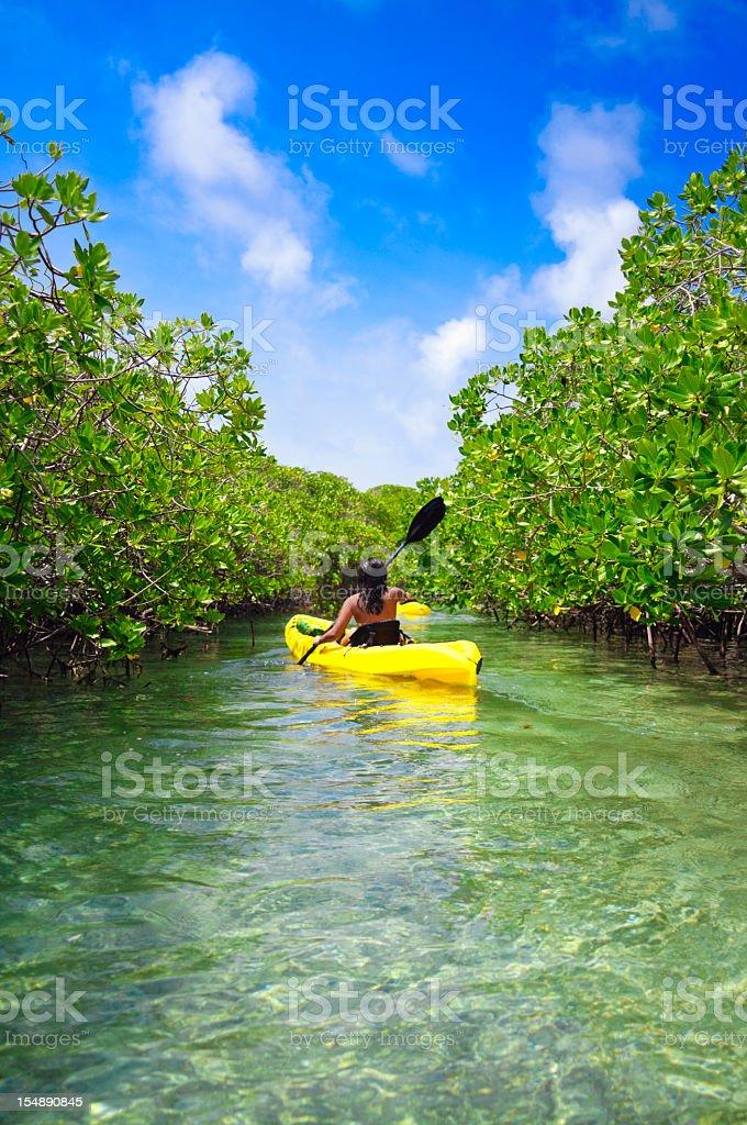 Young woman paddling on kayack among tropical mangrove trees stock photo