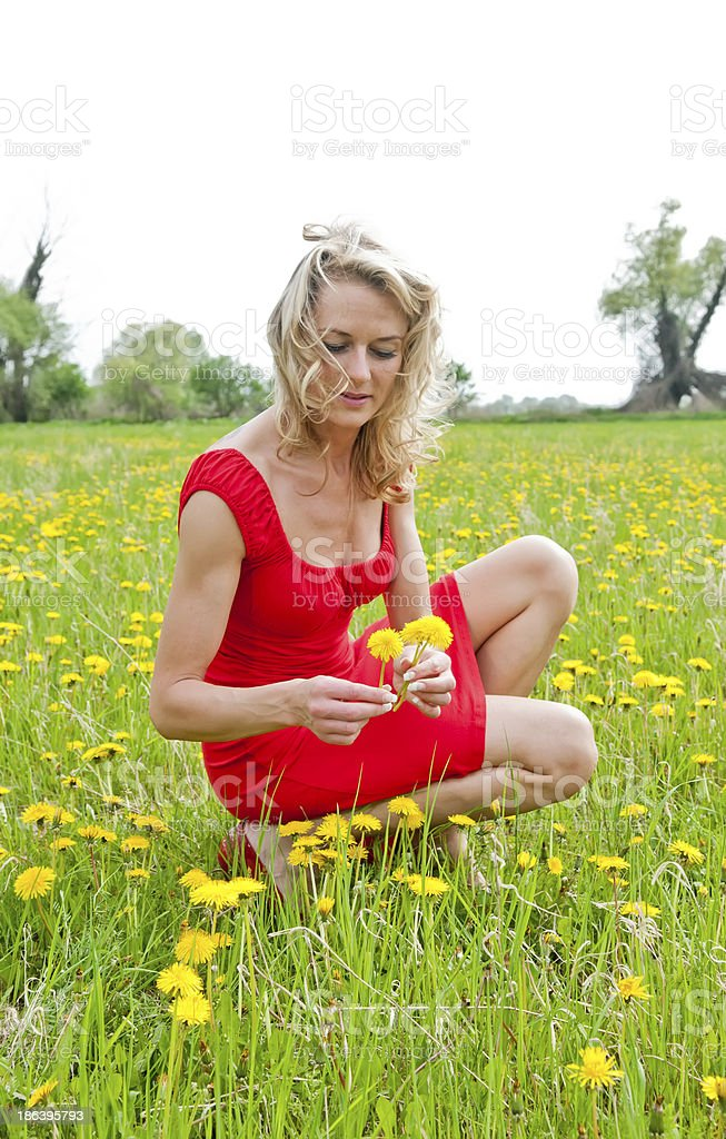 young woman picking flower stock photo
