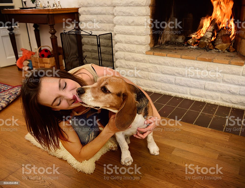 Young woman playing with beagle dog, fireplace stock photo