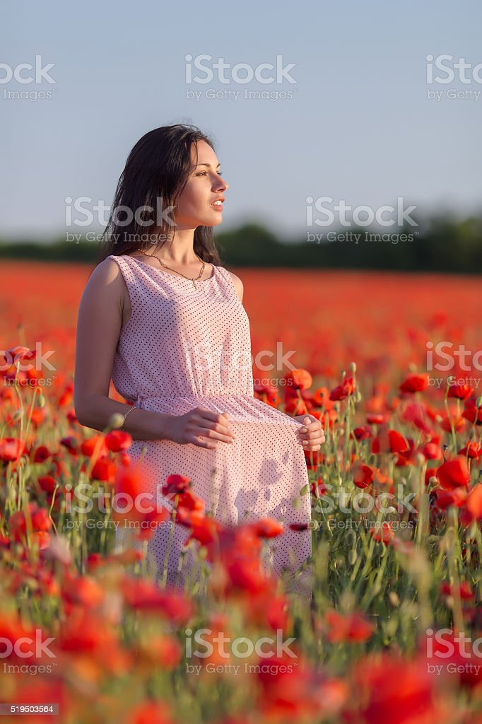 Young woman posing in poppy field stock photo