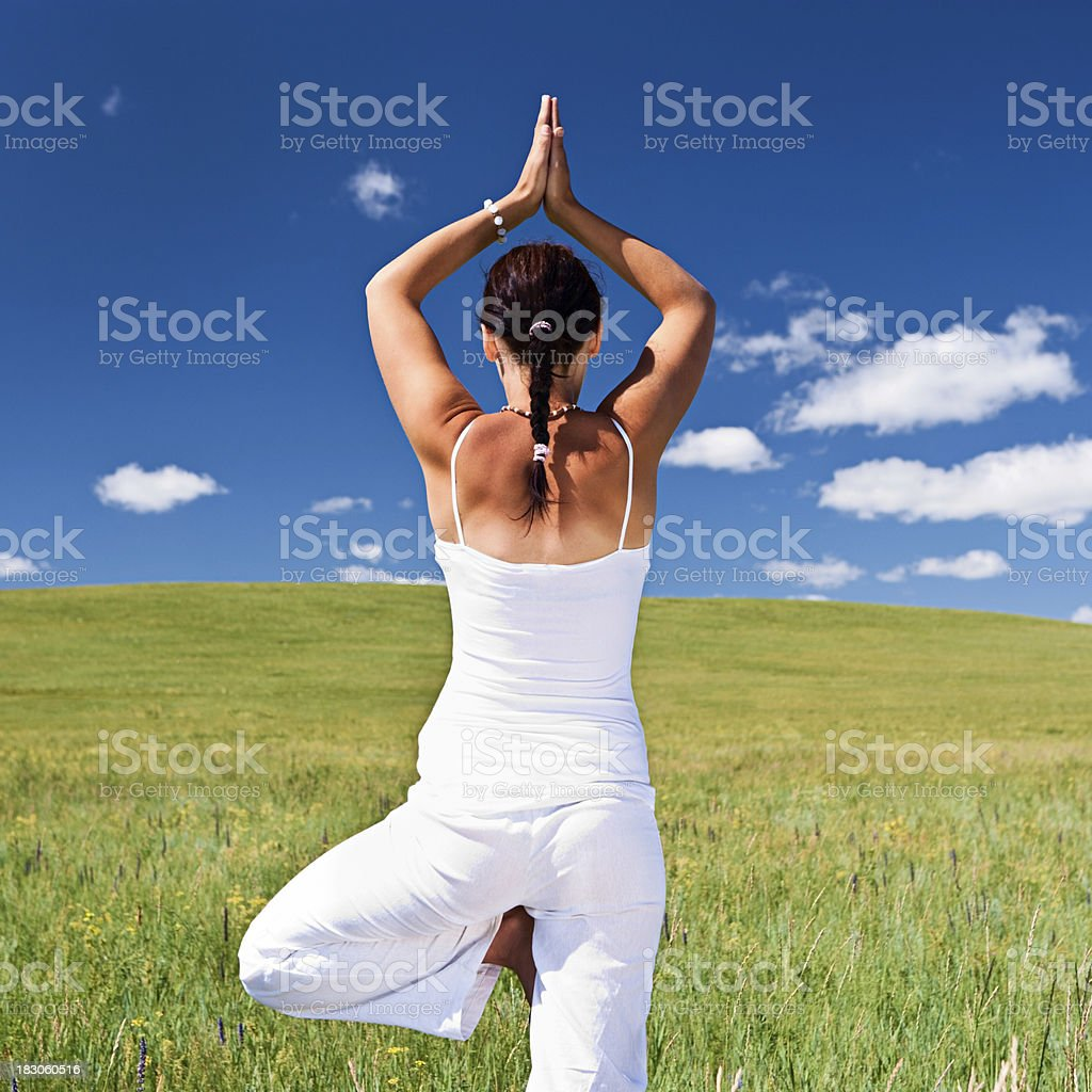 Young woman practicing yoga on the meadow royalty-free stock photo