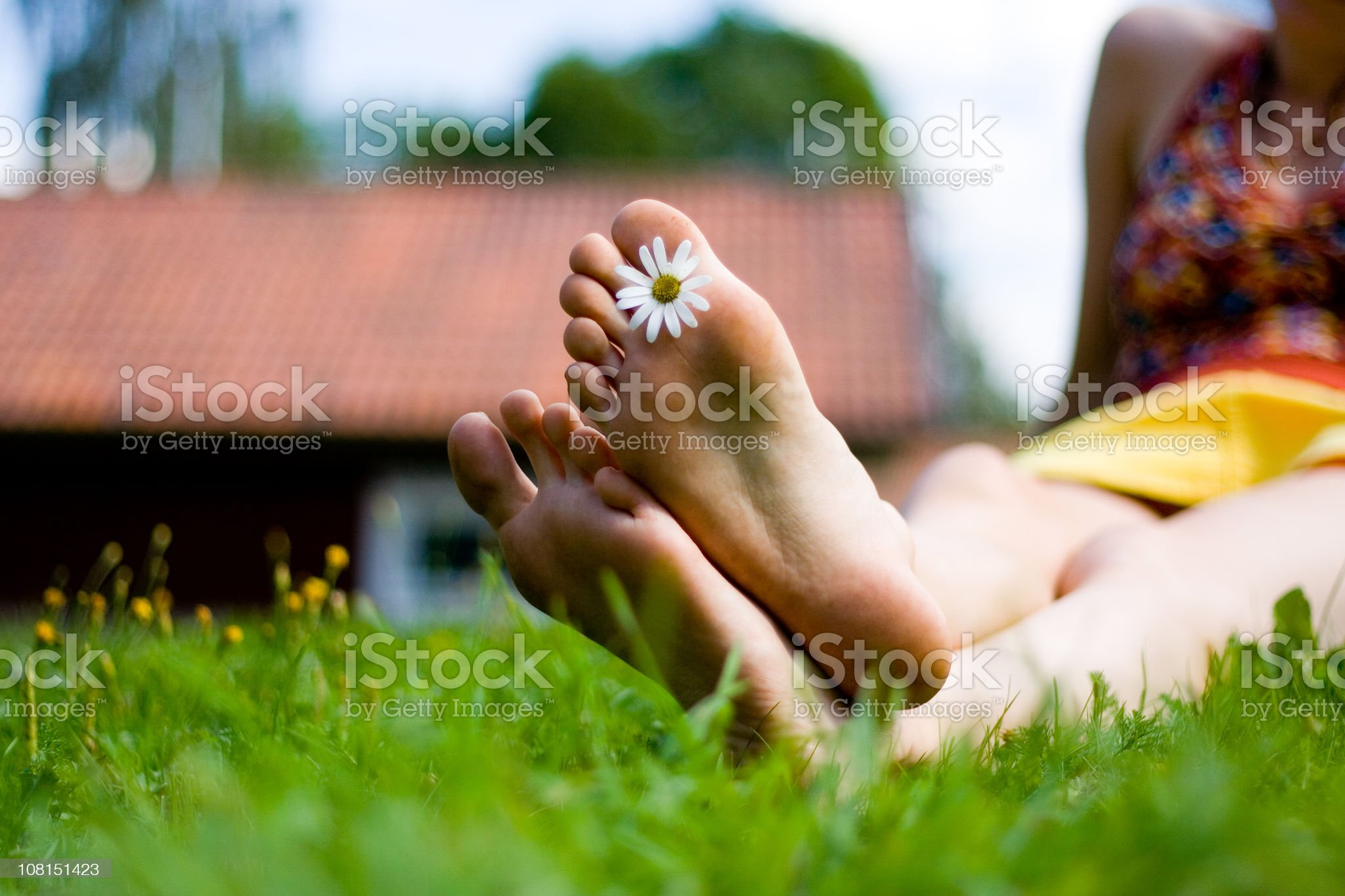 Young Woman Relaxing in Grass with Flower Between Toes royalty-free stock photo