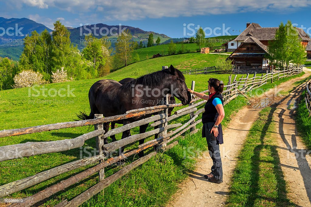 Young woman rider is caressing his brown horse stock photo