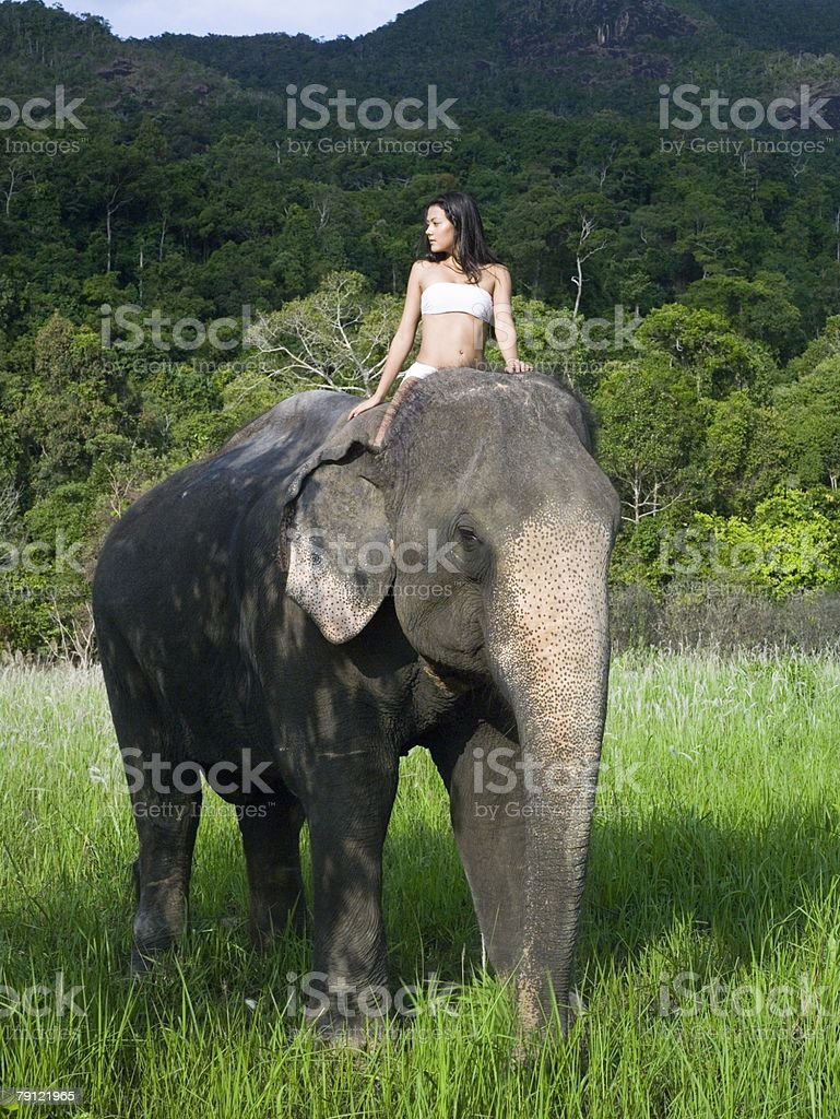 Young woman riding an elephant royalty-free stock photo
