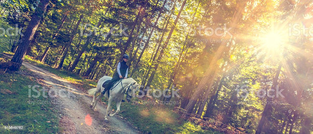 Young woman riding in the forest stock photo