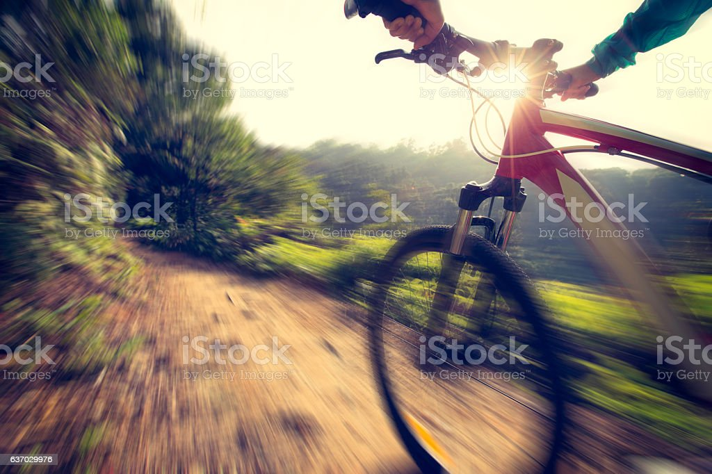 young woman riding mountain bike at forest trail stock photo