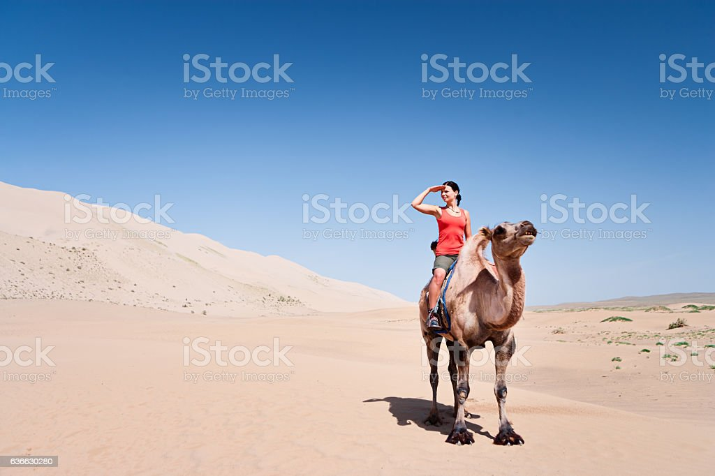 Young woman riding on the camel stock photo