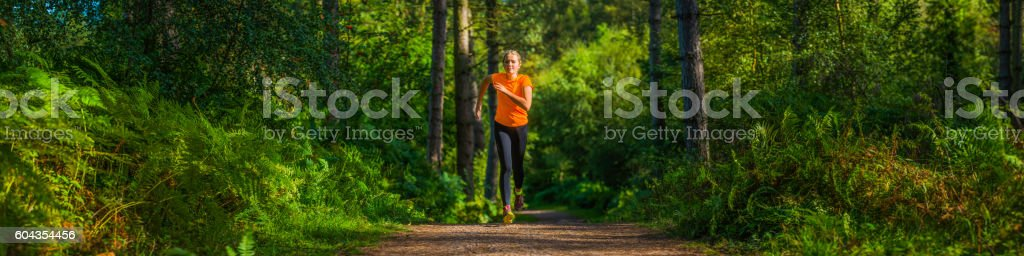 Young woman running along picturesque forest trail through ferns panorama stock photo
