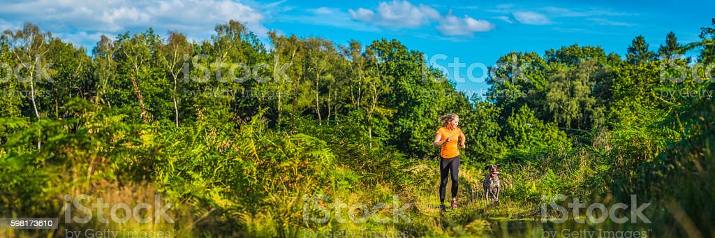 Young woman running with dog through green forest trail panorama stock photo