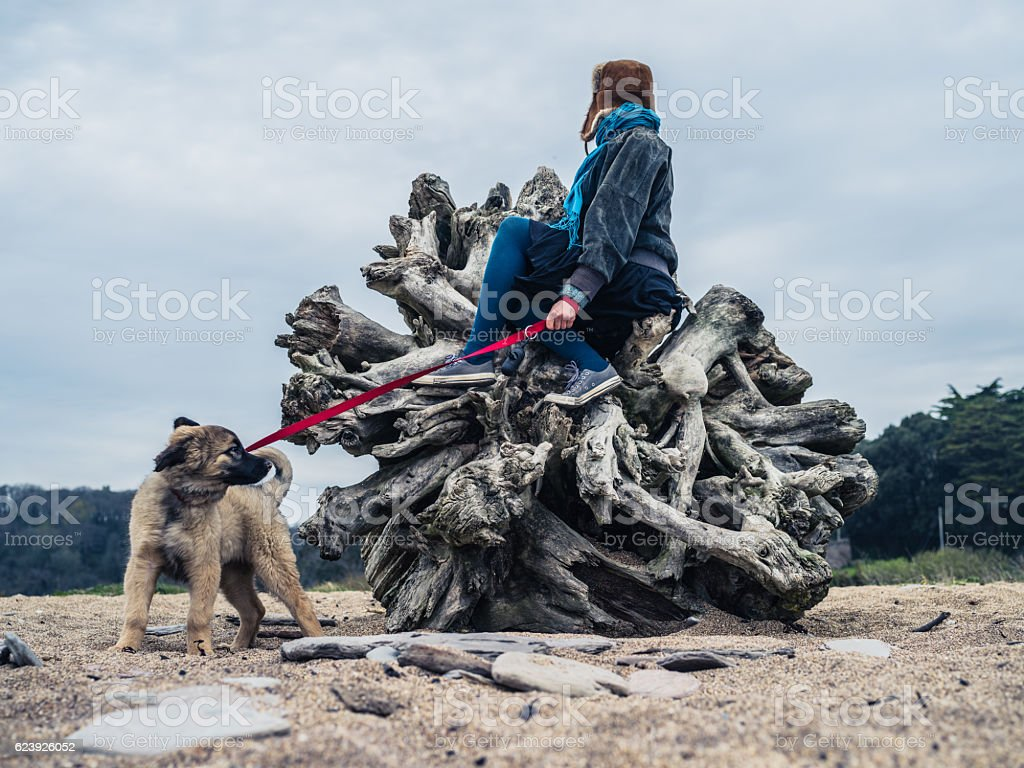 Young woman sitting on unusual tree trunk with puppy stock photo