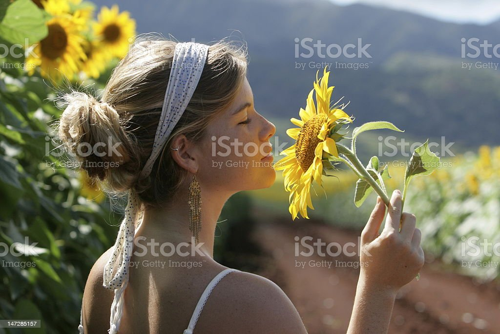 Young Woman Smelling Sunflowers royalty-free stock photo