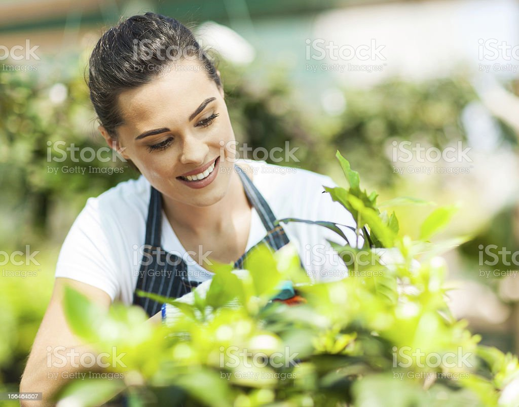 Young woman smiling and gardening in the sunshine royalty-free stock photo