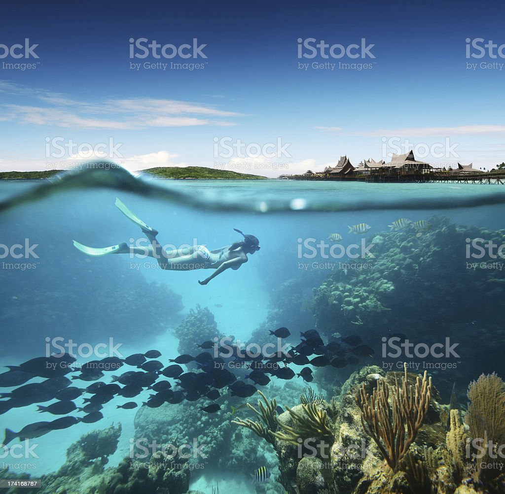 Young woman snorkeling the coral reef in tropical sea stock photo