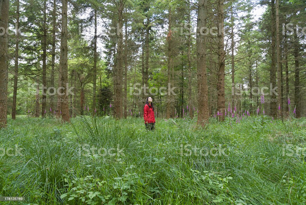 Young woman standing in forest royalty-free stock photo