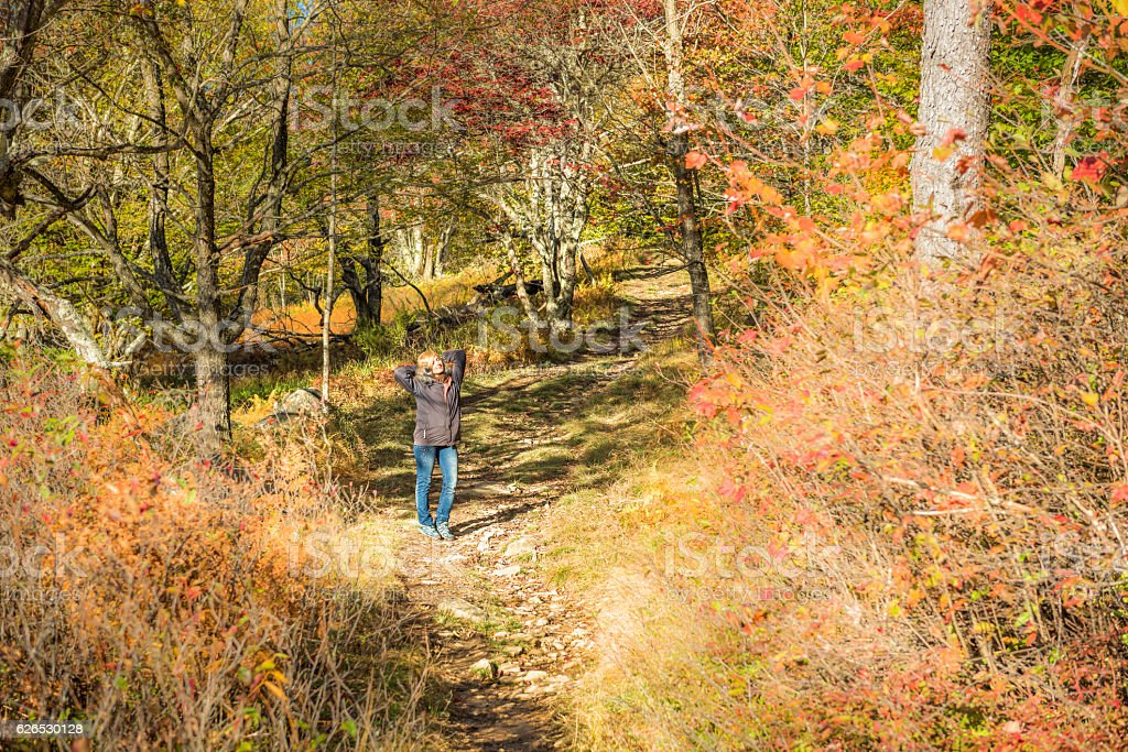 Young woman standing on trail path in autumn forest stock photo