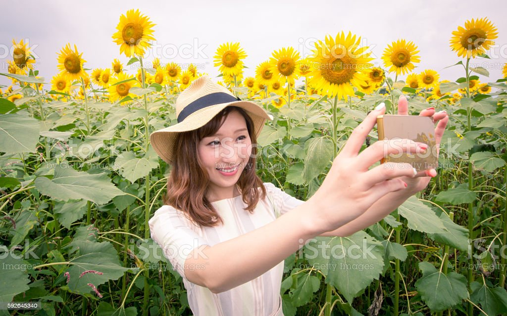Young woman taking selfie picture with smartphone in sunflower field stock photo