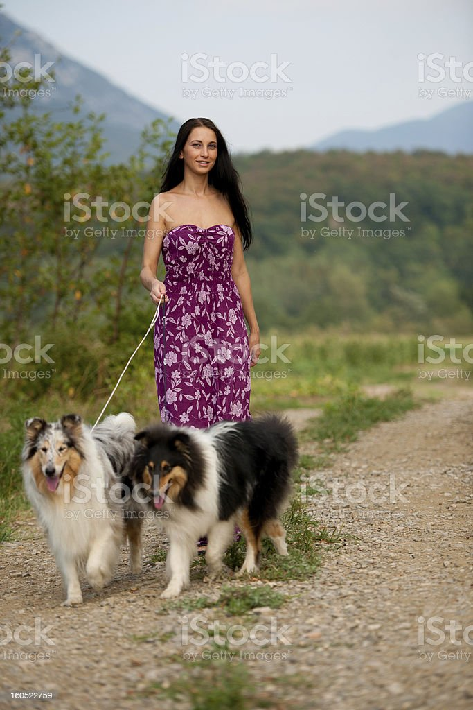 Young woman taking two collies on a walk royalty-free stock photo