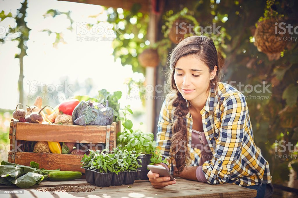 Young woman text messaging at organic farm stock photo