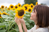 Young woman touching sunflower
