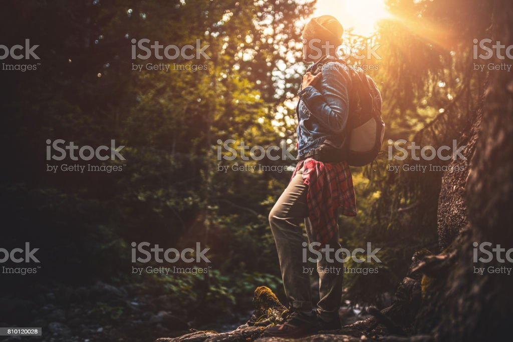 Young woman  trail hiking alone in the forest at sunset stock photo