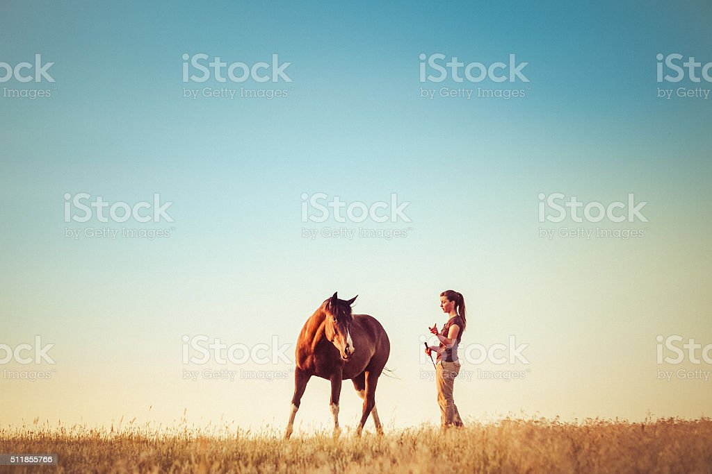 Young Woman Training Horse stock photo